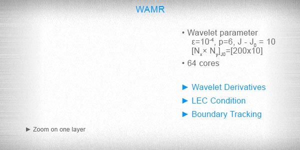 3D Macro-scale simulation, Wavelet adaptive multiresolution representation (WAMR)